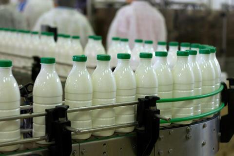 شیرهای پاستوریزه سمی یا سالم ؟!